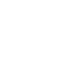 White temperature icon